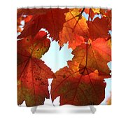 Fall In Love With Autum Shower Curtain