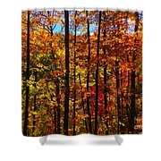 Fall In Ontario Canada Shower Curtain