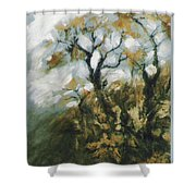 Fall In The Sumacs Shower Curtain