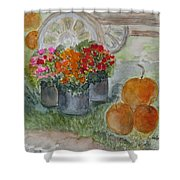 Fall In Vermont Shower Curtain