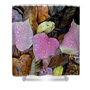 Fall Leaves 2015 Shower Curtain