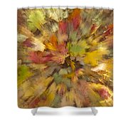 Fall Leaves Abstract Shower Curtain