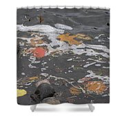 Fall Leaves Floating On The River Shower Curtain