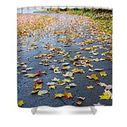 Fall Leaves Shower Curtain by Michael Tesar