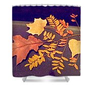 Fall Leaves On Granite Counter Shower Curtain