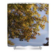 Fall Magic Shower Curtain