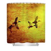 Fall Migration . Northern Shovelers . Texture . 40d5393 Shower Curtain