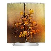 Fall Oak Leaves Shower Curtain