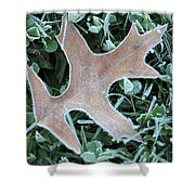 Fall On Ice Shower Curtain