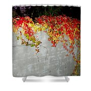Fall On The Wall Shower Curtain