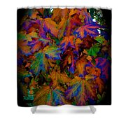 Fall Painting By Mother Nature Shower Curtain