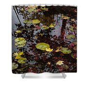 Fall Pond Reflections - A Story Of Waterlilies And Japanese Maple Trees - Take One Shower Curtain