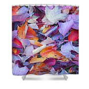 Fall Purples  Shower Curtain