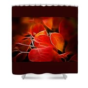 Fall Red 6675 Shower Curtain