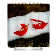 Fall Red Winter White Shower Curtain