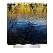 Fall Reflection At The River 2 Shower Curtain