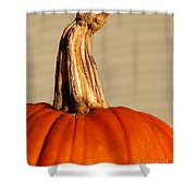 Fall Rising Shower Curtain