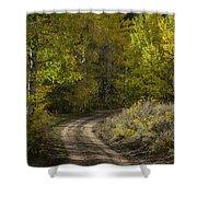 Fall Roads Shower Curtain