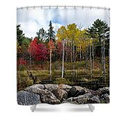 Fall Scene 4 Shower Curtain