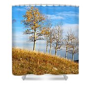 Fall Sentinels Shower Curtain