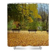 Fall Series 13 Shower Curtain