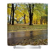 Fall Series 15 Shower Curtain