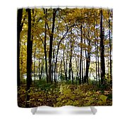 Fall Series 3 Shower Curtain