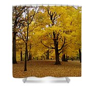 Fall Series 5 Shower Curtain