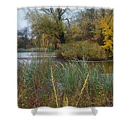 Fall Series 7 Shower Curtain