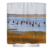 Fall Shellfishing Shower Curtain
