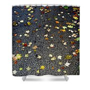 Fall Sparkle Shower Curtain