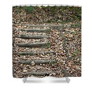Fall Stairs Shower Curtain