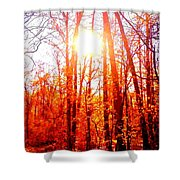 Fall Stroll Shower Curtain