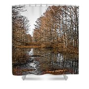Fall Swamp Shower Curtain