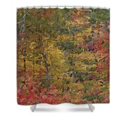 Fall Tapestry Shower Curtain