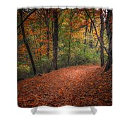 Fall Trail Shower Curtain