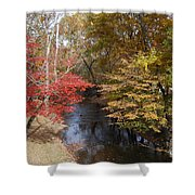 Fall Transition Shower Curtain