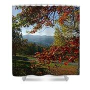 Fall Tree Colors II Shower Curtain