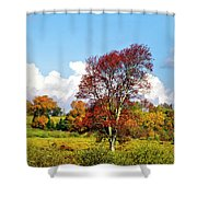 Fall Trees In Country Field Shower Curtain