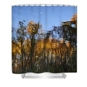 Fall Trees Reflected Shower Curtain