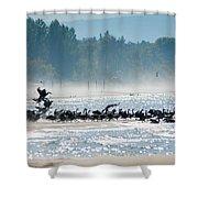 Fall Wasaga Beach Shower Curtain