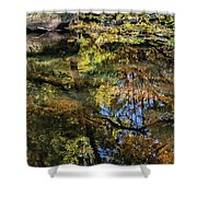 Fall Into Seasons Shower Curtain