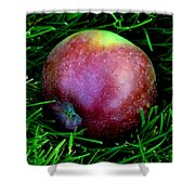 Fallen Apple Shower Curtain