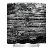 Fallen Black And White Trees And Lines In Nature Shower Curtain