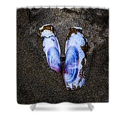 Fallen Butterfly Shower Curtain