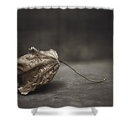 Fallen Leaf Shower Curtain