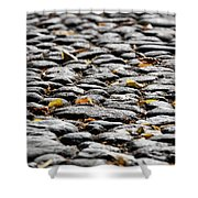 Fallen Leaves On A Street At Autumn Shower Curtain