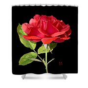 Fallen Red Rose Cutout Shower Curtain