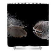 Fallen Reflections Shower Curtain