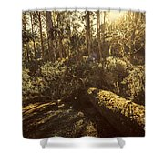 Fallen Tree In Foliage Shower Curtain